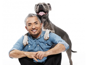 "Cesar Millan ""Once Upon A Dog - Tour 2018"""