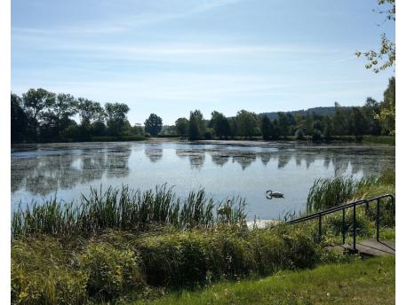 Lonesome Lake Festival